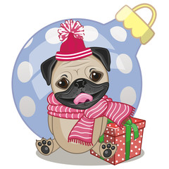 Pug Dog in a hat