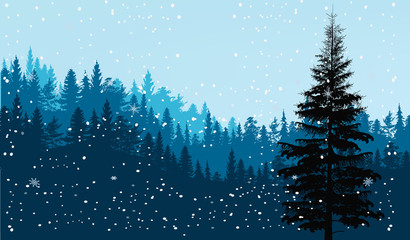 dark firs under snowfall illustration