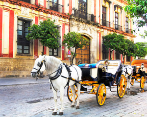 Old horse drawn carriage at Seville street