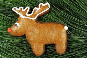homemade reindeer gingerbread on fir tree
