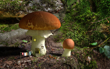 Fairytale mushroom house in the woods.