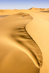 Sands Of Morocco