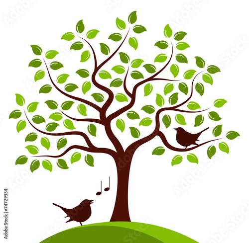 Naklejka tree and birds