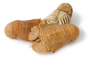 Three cooked flathead lobsters