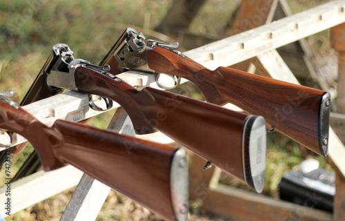 Skeet shooting - 74733793