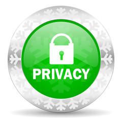 privacy green icon, christmas button