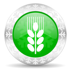 grain green icon, christmas button, agriculture sign