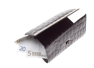 Hand holding a euro into wallet