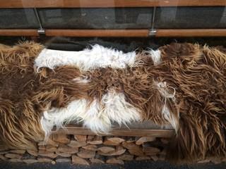 Sheep fur on coffee shop seat