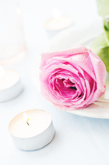 pink rose with candles