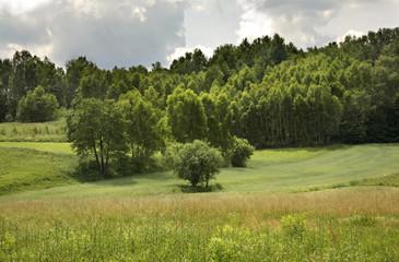 Guciow. Poland
