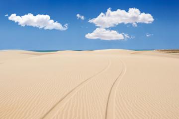 Wheel print in sand dunes of santa monica beach - Praia de Santa
