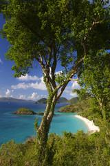 Bright Caribbean Beach Overlook Virgin Islands