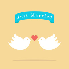 love wedding birds, just married