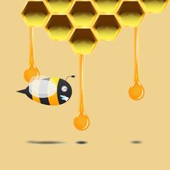 bee smile under honeycomb