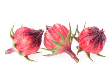 Hibiscus sabdariffa or roselle fruits on white background.