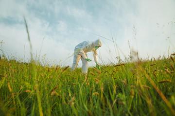 Scientist analyzing green plants on summer field