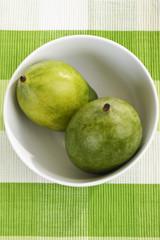 Mango (Mangifera indica) aus Israel