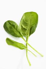 Spinat (Spinacia oleracea)