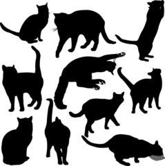 Cats silhouette collection - vector 1