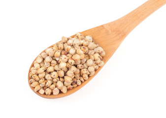 Sorghum in a wooden spoon