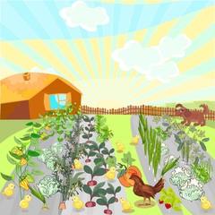 Rural landscape with kitchen-garden