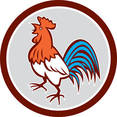 Chicken Rooster Crowing Looking Up Circle Retro