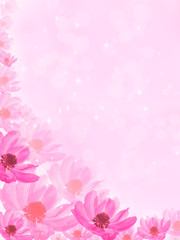 fantastic pink background with flower anemone