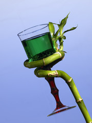 Bamboo green stalk and goblet with lemonade