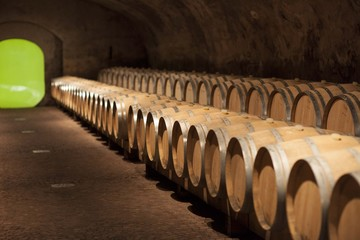Cantina di Vino e barrique