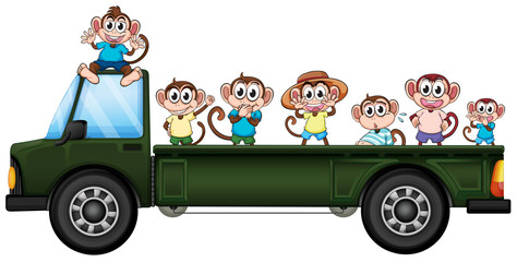 Truck and monkeys