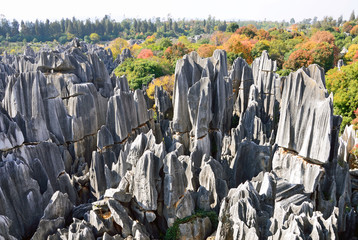 Stone Forest in Kunming City,China