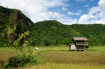 Indonesia countryside.Harau valley