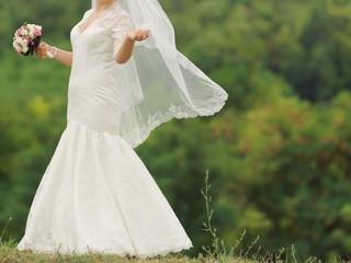 Bride Holding Lace Veil