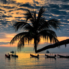 Sunset with palm and longtail boats on tropical beach