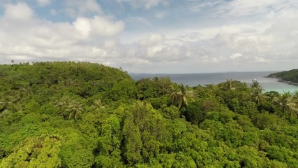 Aerial shot of the jungle and the bay.