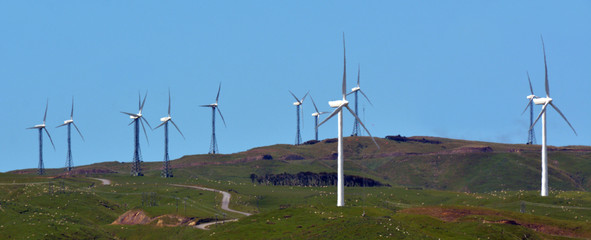 Te Apiti Wind Farm in Palmerston North, New Zealand