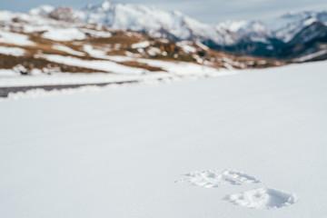 huella en la nieve