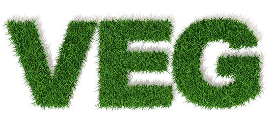 Vegan scritta parola con lettere di erba, vegano vegetariano