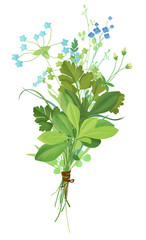 Small bouquet of wild flowers and herbs.