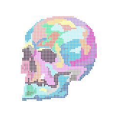 Rainbow human skull