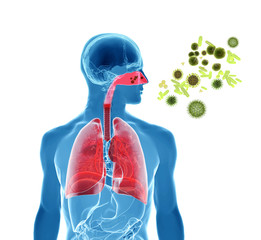 Pollen allergy / Hay fever/ Influenza infection