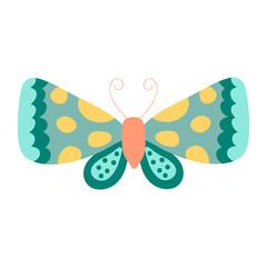 Moth vector. Cartoon design