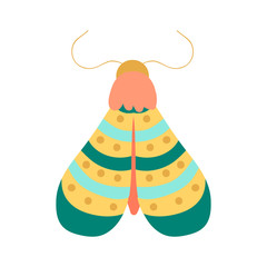 Moth vector. Cartoon design