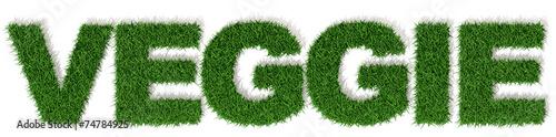 canvas print picture Vegan scritta parola con lettere di erba, vegano vegetariano