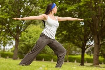 Peaceful brunette doing yoga on grass