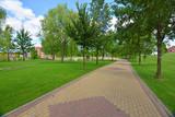 camino de adoquines en un parque