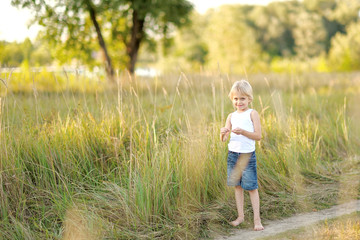 portrait of a little boy on the meadow in summer