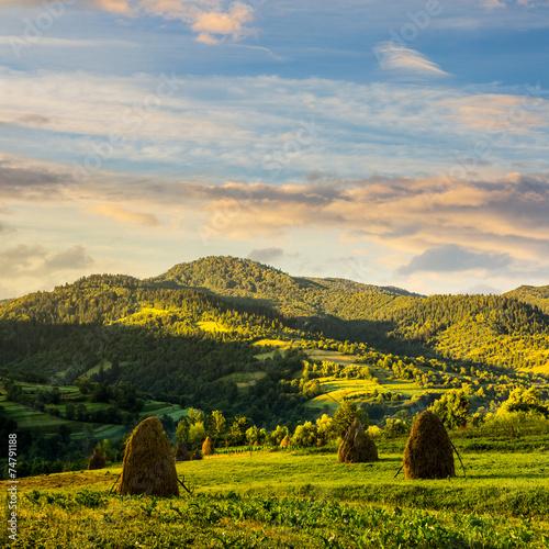 field with haystack on hillside at sunrise © Pellinni
