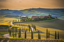 "Постер, картина, фотообои ""Sunny fields in Tuscany, Italy"""